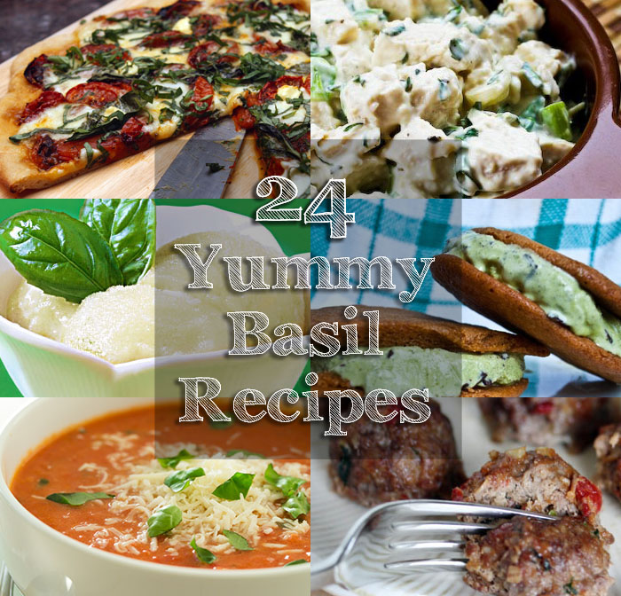 24-yummy-basil-recipes