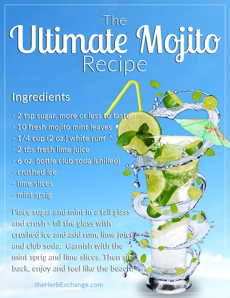 ultimate mojito recipe full