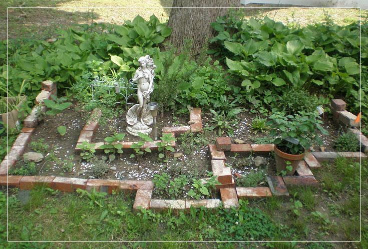 an outdoor kitchen herb garden