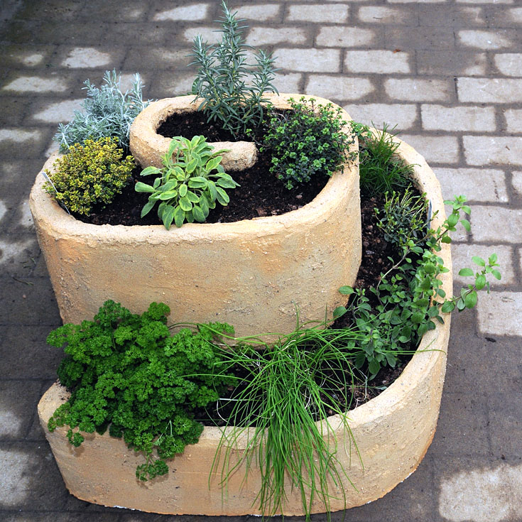 a spiral herb garden