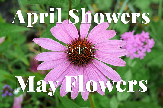 April Showers Bring May Flowers Giveaway