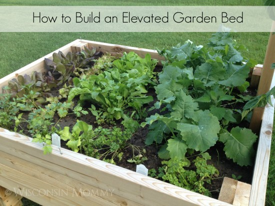 how-to-build-an-elevated-garden-bed-title-550x412