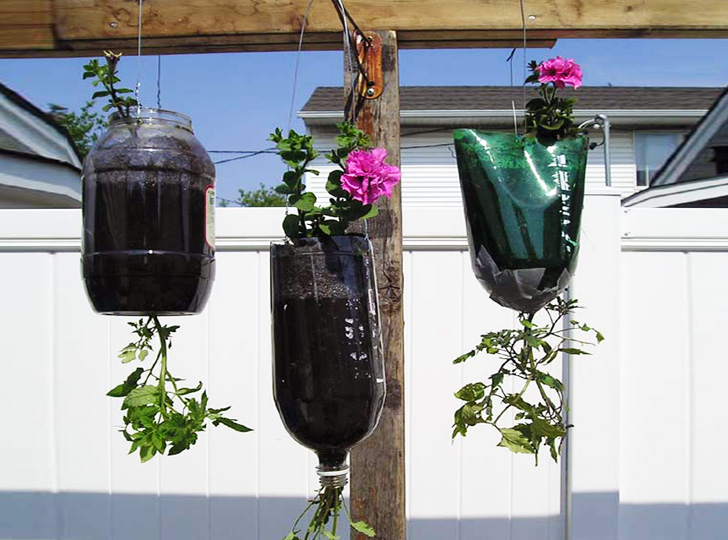 pop-bottle-planters