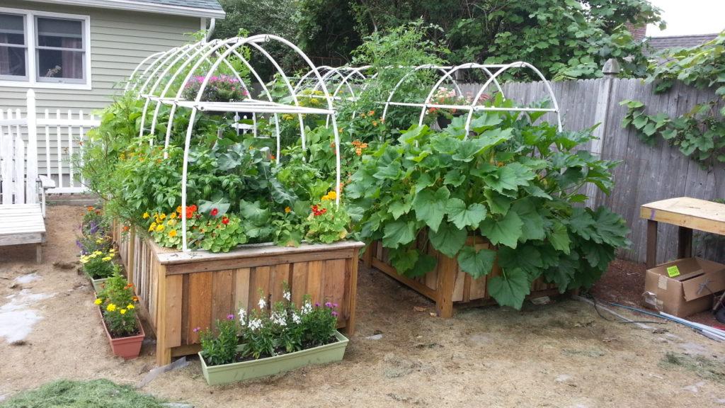 raised-bed-gardens-from-pallets-gardening-pallet-raised-garden-beds