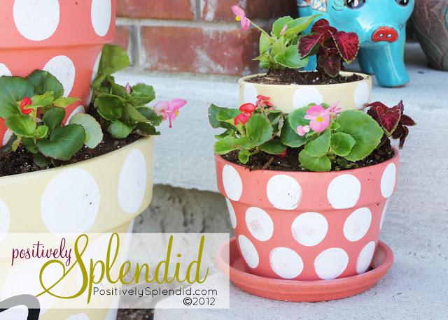 tiered+polka+dot+terracotta+planter+6