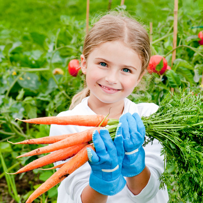 hence make your kid wear the hand gloves for a safety during the gardening