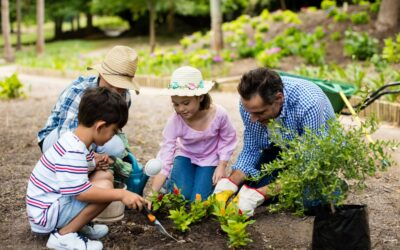 Why This Season Is the Perfect Time to Start Your Victory Garden