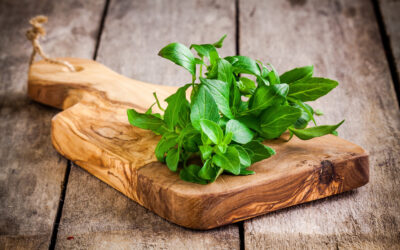 The Secret Life of Basil: Forlorn Love, Holy Water, and Scorpions?