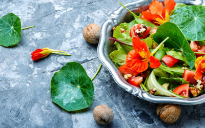 More than Just a Pretty Face: The History and Medicine Behind Edible Flowers